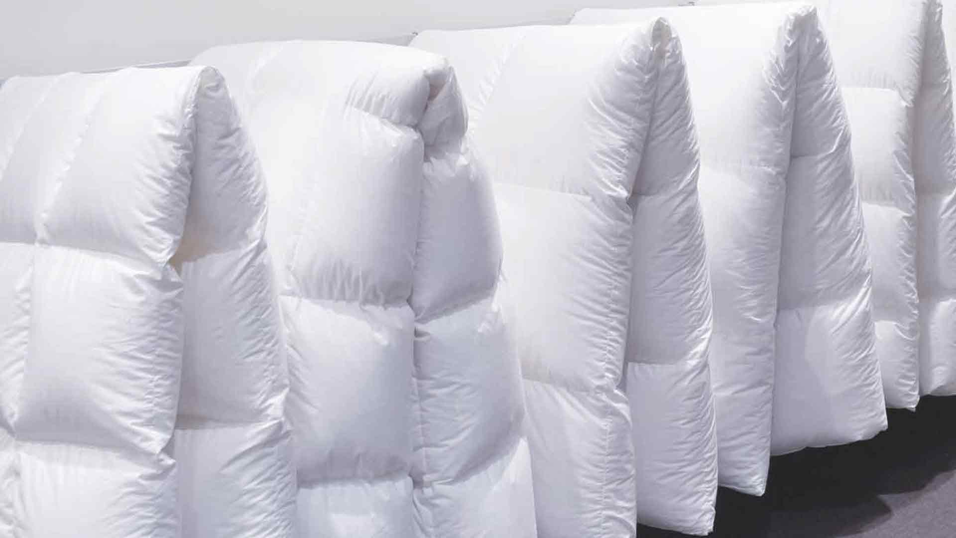 betten hoenscheidt duesseldorf zudecken daunendecken betten h nscheidt. Black Bedroom Furniture Sets. Home Design Ideas